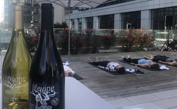 LifeVine boasts that it has little sugar and higher antioxidant levels than most wines. There is a wave of wines and spirits that aim to woo wellness enthusiasts. But some health claims made by alcohol brands have scientists on edge.