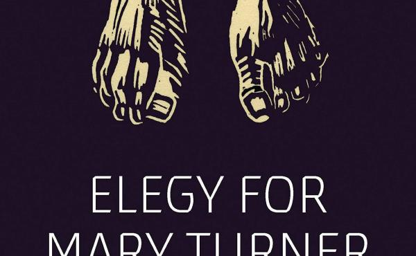 Elegy for Mary Turner: An Illustrated Account of a Lynching, by Rachel Marie-Crane Williams