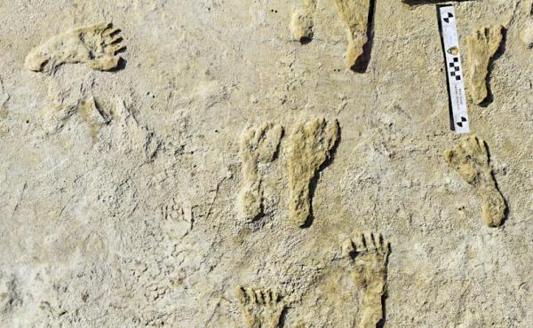 Fossilized human footprints shown at the White Sands National Park in New Mexico. According to a report published in the journal Science, the impressions indicate that early humans were walking across North America around 23,000 years ago.