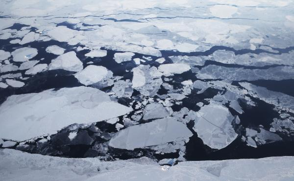 Sea ice is seen from NASA's Operation IceBridge research aircraft off the northwest coast of Greenland in March 2017. A new report says rapid warming over the past three decades has led to a 95 percent decline of the Arctic's oldest and thickest ice.