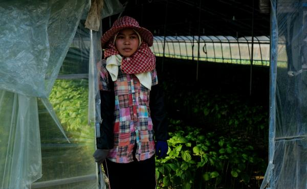 A Cambodian migrant farm worker stands outside the greenhouse where she works growing vegetables in Miryang, South Korea.