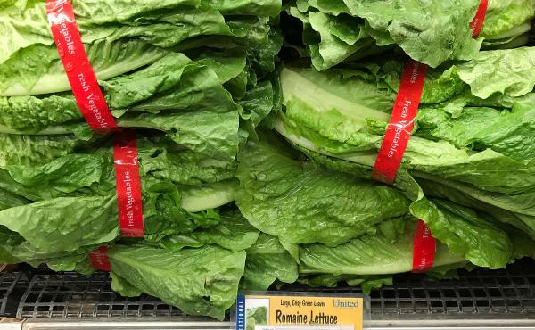 Romaine lettuce is displayed on a shelf at a supermarket in California in April, during an E. coli outbreak traced to contaminated lettuce. The CDC says a new outbreak has made lettuce dangerous to eat, just in time for America's most foodcentric holiday.
