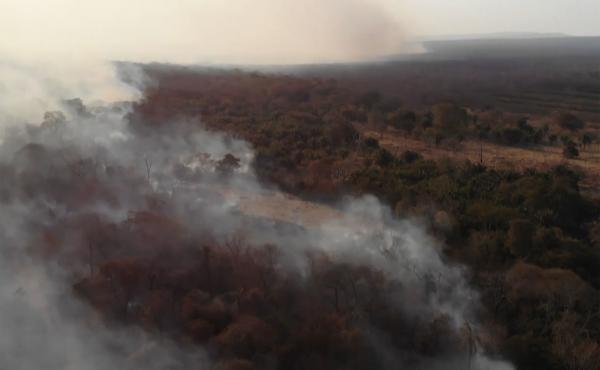 A wildfire blazes near the town of Roboré, in eastern Bolivia's Santa Cruz region, on Aug. 21.