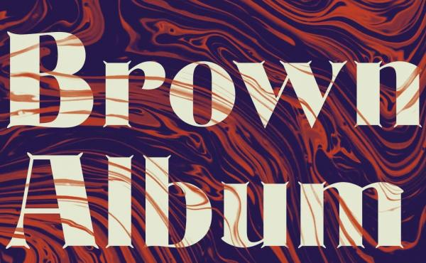 Brown Album: Essays on Exile and Identity, by Porochista Khakpour