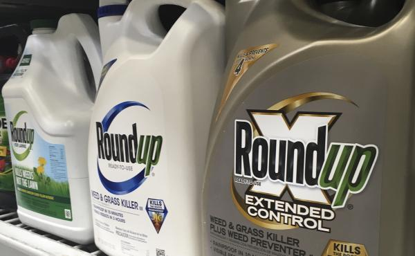 A jury in federal court in San Francisco on Tuesday concluded that Roundup weed killer was a substantial factor in a California man's cancer. The company denies the connection.