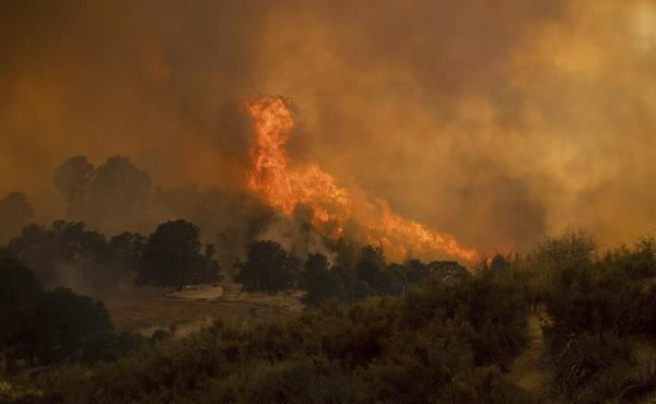 Northern California's River Fire tore through a canyon near the town of Lakeport early last week, filling orange-tinged skies with smoke for miles around.
