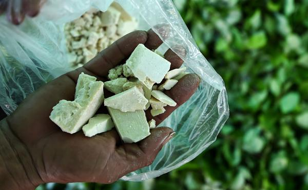 A farmer shows cocaine base paste, made from coca leaves in Colombia's Guaviare department in 2017.