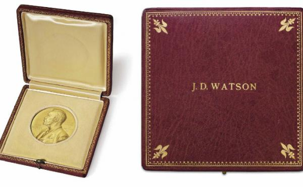 The 1962 Nobel Prize Medal in Medicine or Physiology that James Watson won has been sold at auction.