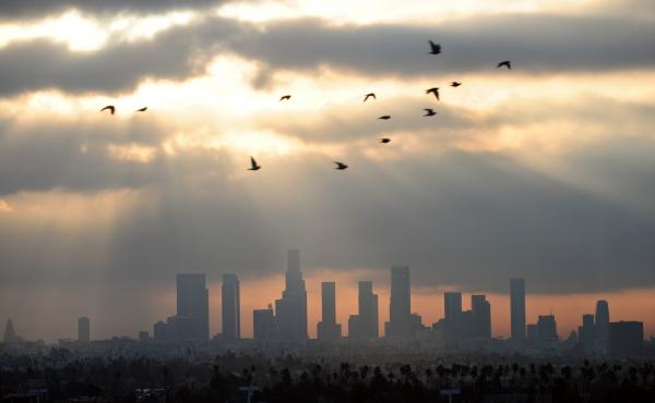 Dear Los Angeles features snippets of diary entries and letters written between 1542 to 2018. Above, daybreak over downtown LA in December 2011.