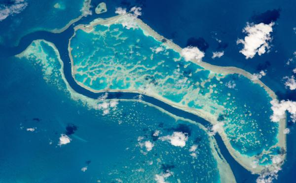 A portion of Australia's Great Barrier Reef photographed from the International Space Station. The Flinders Reef area of the Great Barrier Reef is one of 11 sites around the world where scientists are looking for decisive geological evidence of a new epoc
