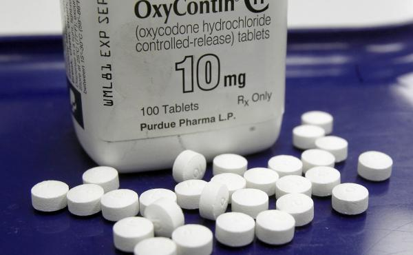 A single company, Purdue Pharma, the maker of OxyContin, funneled $4.7 million to advocacy groups over the five-year period, according to the report.