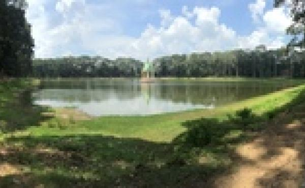 A pond in Vietnam that the random algorithm chose for Max Hawkins to visit.