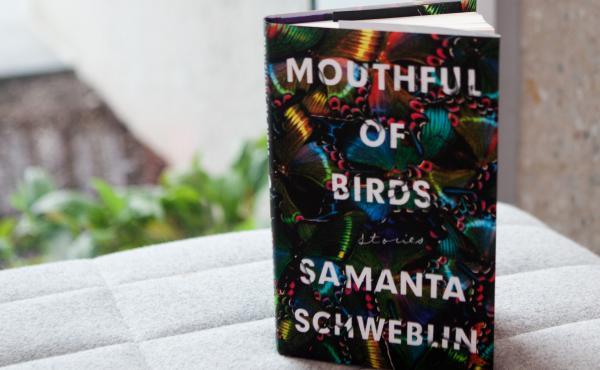 Mouthful of Birds, by Samanta Schweblin