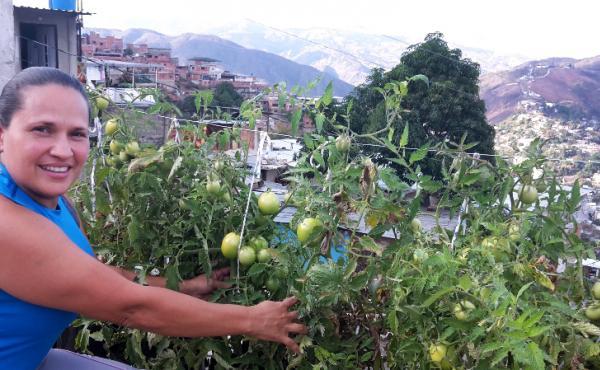 Mileidis Bolivar shows off the tomatoes she grows in her rooftop garden in a Caracas, Venezuela, slum.