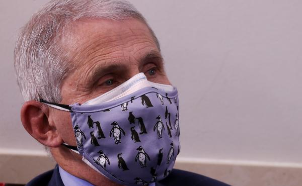 """Dr. Anthony Fauci, director of the National Institute of Allergy and Infectious Diseases, warns that holiday gatherings could lead to """"a really dark time for us"""" by mid-January."""