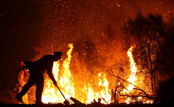 A firefighter monitors a back fire while battling the Medocino Complex fire on Aug. 7, near Lodoga, Calif. The Mendocino Complex Fire, which is made up of the River Fire and Ranch Fire, has become the largest wildfire in state history with over 344,890 ac