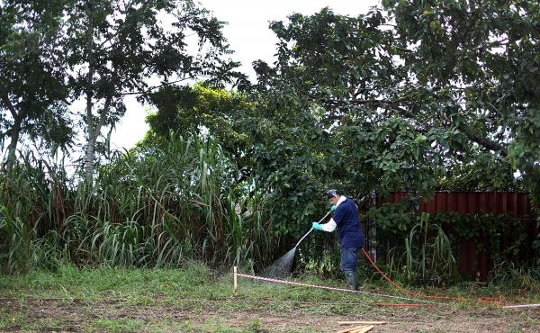 Stephen Jenner, from the Florida Department of Agriculture and Consumer Services, sprays an insecticide under an avocado tree where some Oriental fruit flies were found on September 9, 2015 in Homestead, Fla. After months fighting a fruit fly infestation,