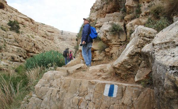 Ibrahim Habash walks with one of the many Palestinian recreational hiking groups that have sprung up largely in the last decade. The Israeli trails network, with its blue and white markings, extends into the West Bank, and Israeli and Palestinian hikers o