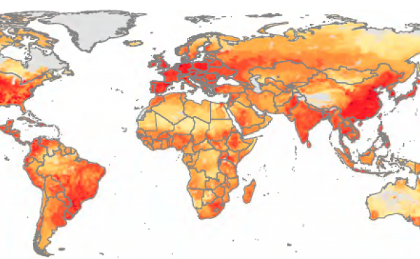 Regions that produce the most pork and chicken also use the most antibiotics on farms. Hot spots around the world include the Midwest in the U.S., southern Brazil, and China's Sichuan province. Yellow indicates low levels of drug use in livestock; orange