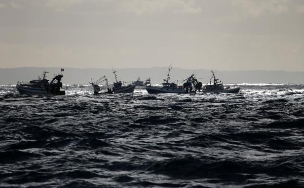 A flotilla of more than a hundred trawlers in the Bay of Seine in November of last year.