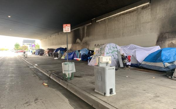 The latest Los Angeles homeless count found 66,433 people now live on the streets, in shelters and in vehicles around LA County.