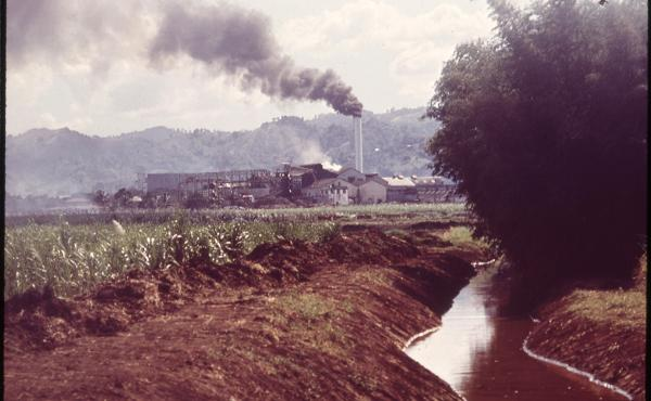 A Puerto Rican sugar refinery in 1973. In 1964, sugar accounted for almost half of all agricultural sales on the island, and sugar manufacturing accounted for 23 percent of all wages that Puerto Ricans earned. Then, within just a few years, the industry c