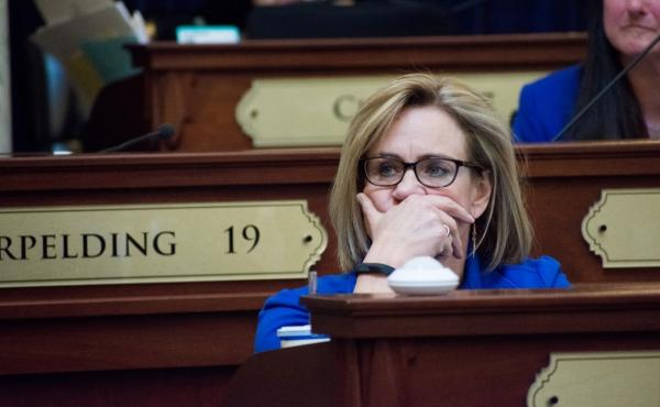 Democratic state Rep. Muffy Davis, seen here in 2019, and Democratic Rep. Sue Chew are suing Idaho's top House Republican. They contend he's preventing them from safely participating in the upcoming legislative session amid the pandemic.