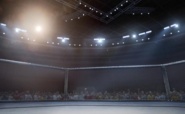 In Why We Fight, Josh Rosenblatt writes of his quest to gain greater self-knowledge through MMA fighting.