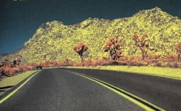 'Wonder Valley,' By Ivy Pochoda