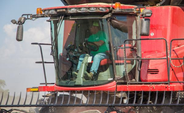 """Brent Henderson harvests soybeans on his farm near Weona, Ark., in 2017. That crop showed symptoms of dicamba exposure. Henderson switched to Xtend soybeans the following year, he says, as """"insurance"""" against future damage."""