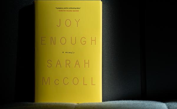 Joy Enough, by Sarah McColl