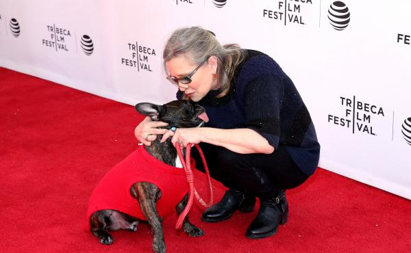 Gary the dog and Carrie Fisher attend Tribeca Tune In: Catastrophe at SVA Theatre 2 in April in New York City.