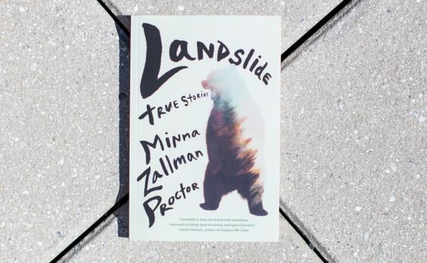 Landslide, by Minna Zallman Proctor