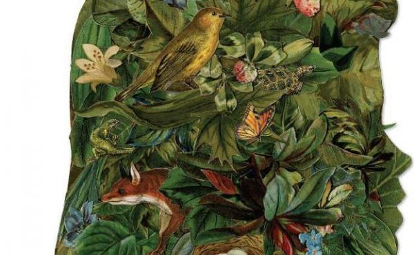 Late Migrations: A Natural History of Love and Loss, by Margaret Renkl