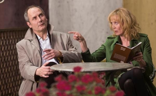 Hippolyte Girardot and Sabine Azéma play spouses in Life of Riley.