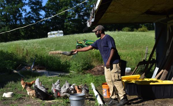 Daryl Minton, 45, throws chicken feed into a yard where the chickens roam at the Triple J Farm in Windsor, N.Y. Minton lives and works on the farm his grandfather, James Minton, bought it a decade ago. Between lending discrimination and rising costs, many