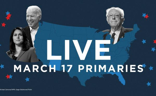 Follow live coverage of the primaries in Illinois, Florida and Arizona.