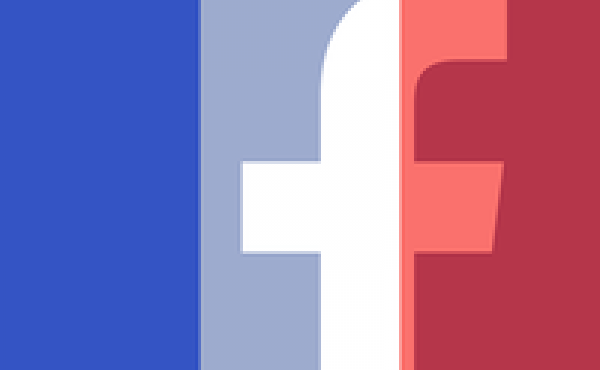 Facebook's french flag profile photo filter.
