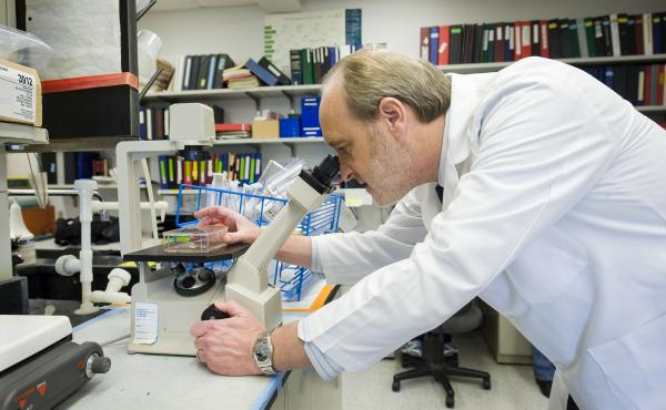 Georgetown's Robert Clark says it's very difficult to say precisely how many experiments have been spoiled by contaminated cell lines.