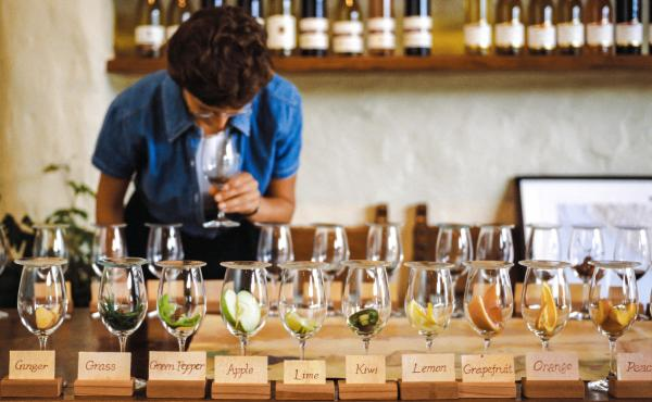 A visitor to the Robert Mondavi Winery in Napa Valley, Calif., attends a wine tasting class. Unlike food — which gives us sensory cues like crunchy and hot, as well as tasting, say, salty — with wine, it's all about tiny differences in taste and smell