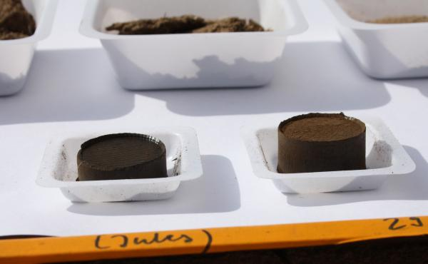 Hydrochar derived from poultry waste was produced in a lab at Ben-Gurion University in Israel. The hydrochar can be made into briquettes, which can be used as charcoal for cooking food.