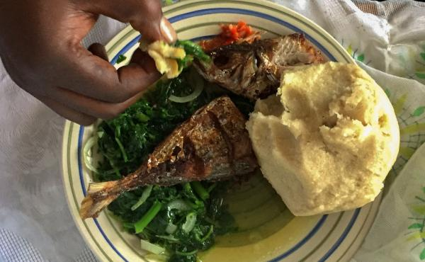 A typical meal in the Democratic Republic of Congo consists of greens, fufu - a starchy ball made from cassava flour - and meat, such as freshwater fish.
