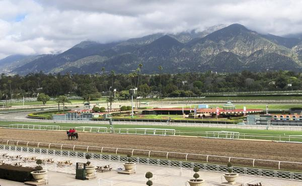 A few horses and riders are seen on the track at Santa Anita Park, in Arcadia, Calif., in March. Fifty-six horses have died there since July 2018.