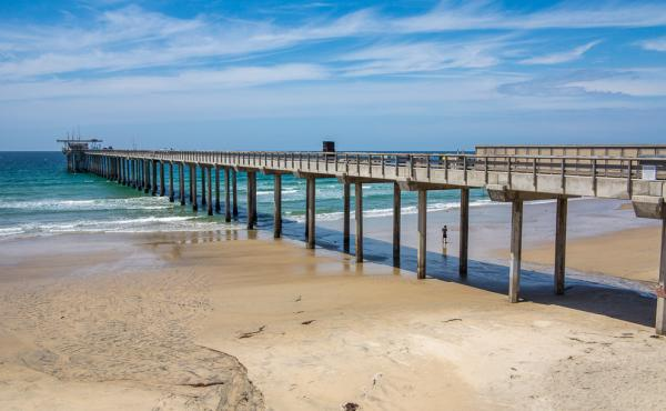 At the Ellen Browning Scripps Memorial Pier in southern California, researchers logged the warmest sea surface temperature in 102 years.