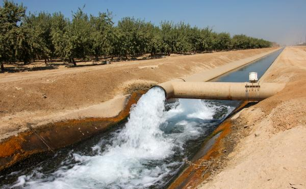 California's farmers are pumping billions of tons of extra water from underground aquifers this year, because of the drought. But new restrictions on such pumping are coming into force.