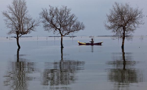 Floodwaters from rising sea levels have submerged and killed trees in Bedono village in Demak, Central Java, Indonesia. As oceans warm, they expand and erode the shore. Residents of Java's coastal villages have been hit hard by rising sea levels in recent