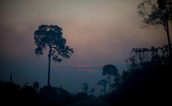 Sunset colors cut through the smoky haze in the Brazilian Amazon.
