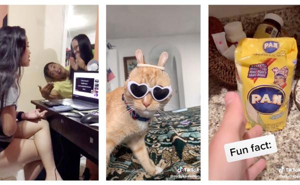 In a year of gloom and doom, disasters and disease, these are the sweet online moments from around the world that brightened up our days this year. Left to right: an aspiring singer in the Philippines; scrunchie cat; Venezuelan cooking lessons.