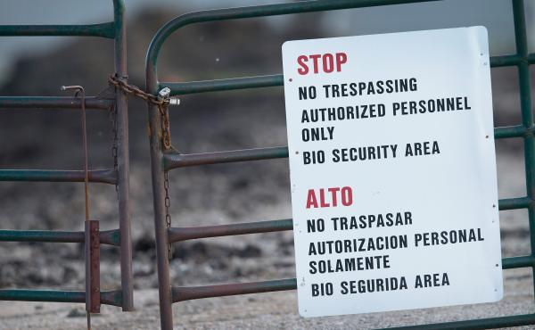 A gate blocks the entrance of a farm operated by Daybreak Foods, on May 17, 2015 near Eagle Grove, Iowa. The facility was reportedly struck by the current outbreak of bird flu. Secretary of Agriculture Tom Vilsick says biosecurity measures are crucial to