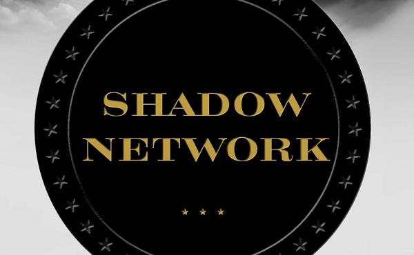 Shadow Network: Media, Money, and the Secret Hub of the Radical Right, by Anne Nelson